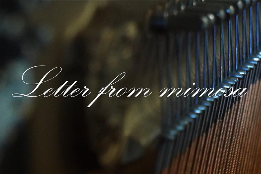 <span>Vidéos</span>Letter from mimosa – Fabio Marouvin
